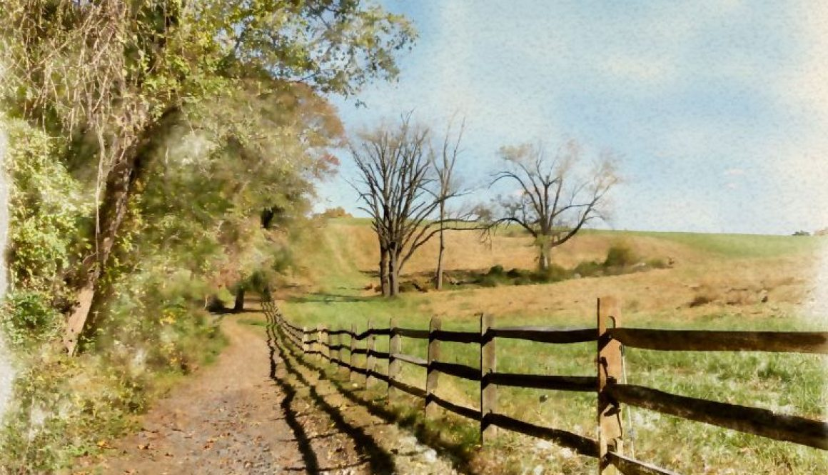lorimer-farm